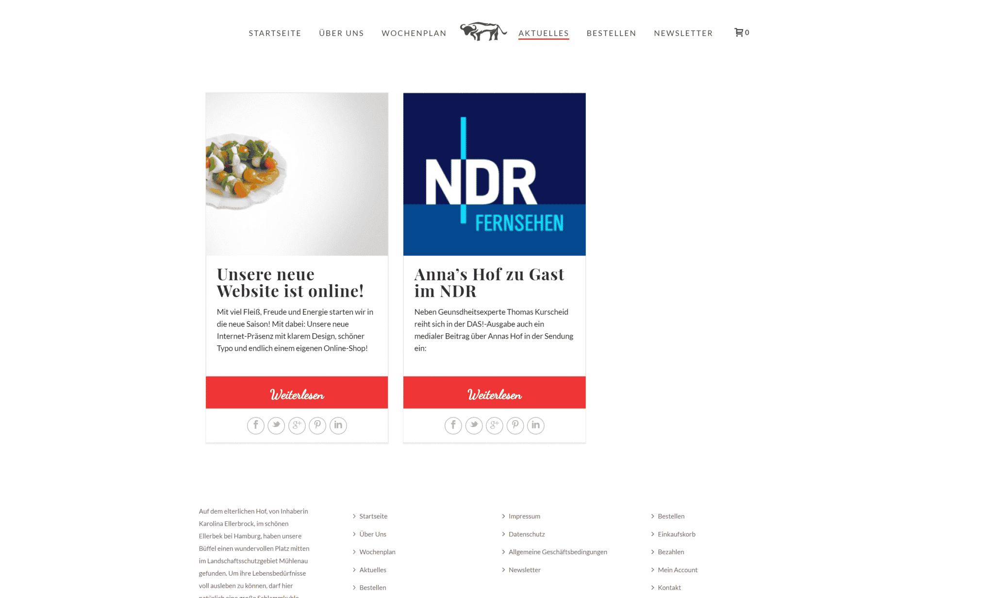 online-shop-agentur-bremen-hamburg-6